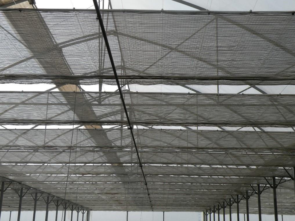 سازه بکسلی در شرکت مهندسی پارس دشت چهلستون